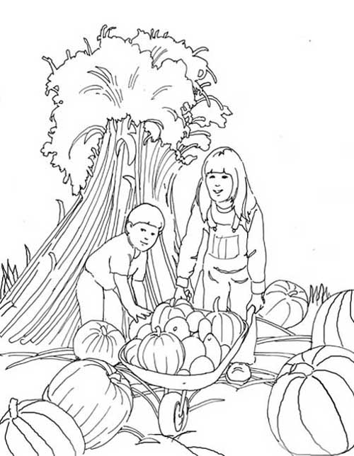 A Pumpkin Patch Coloring Pages